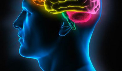Великата когнитивна революция дойде