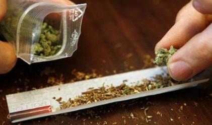 Холандия бавно, но сигурно забранява марихуаната