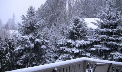 Зимата: голям студ, малко сняг