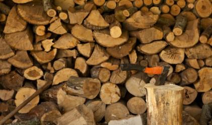 С близо 20% по-скъпо отоплението на дърва и въглища