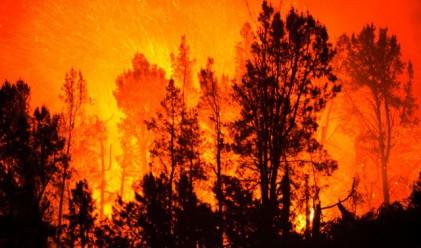 Витоша продължава да гори