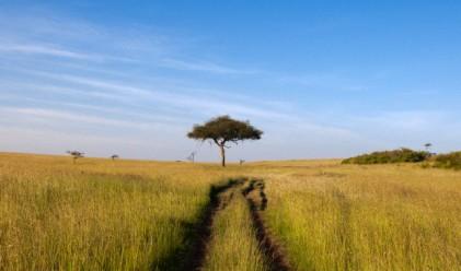 Агро Финанс със 140 792 декара земеделска земя