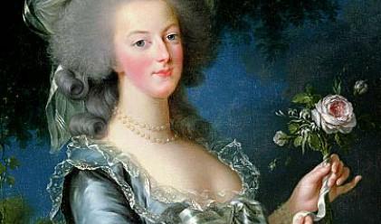 Продадоха пантофи на Мария Антоанета за 50 хил. евро