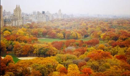 Милиардер дари 100 млн. долара на Сентрал парк