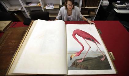 Три копия на най-скъпата книга в света се оказаха в България