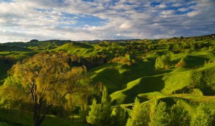 Договорите за аренда на земеделска земя с 2 г. минимум