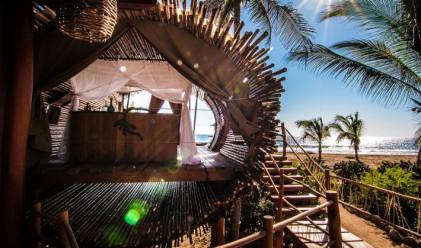 Бамбукова къща от 65 квадрата, захранвана на слънчева енергия