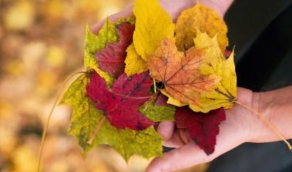 Здравословни летни навици, които са актуални и през есента