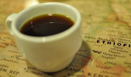 Насладете се на чаша кафе както никога досега