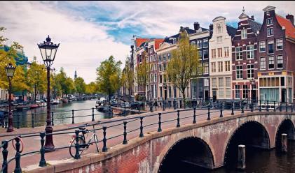 7 причини да посетите Амстердам през есента