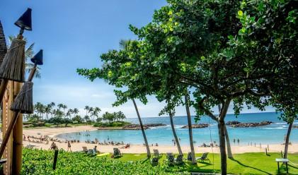 Проклятието на Пеле, или защо да не взимате камъни от Хаваите
