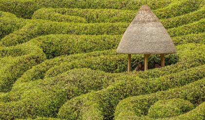 Пет идеални места по света за семейна ваканция