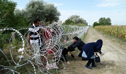 Студът намали мигрантския натиск към България