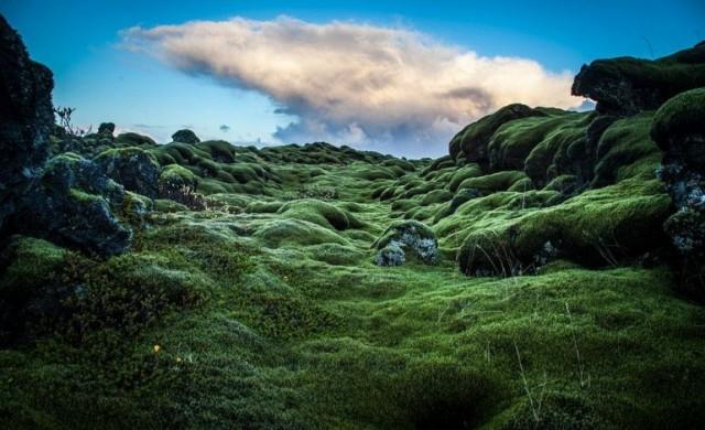 Възхитителните полета от лава в Исландия