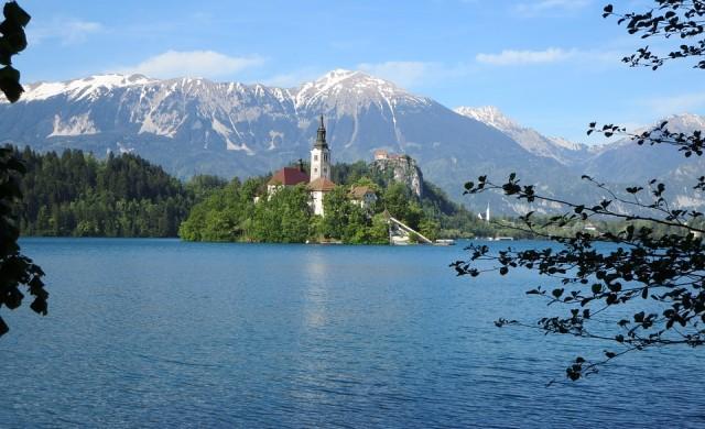 Словенците избират президент