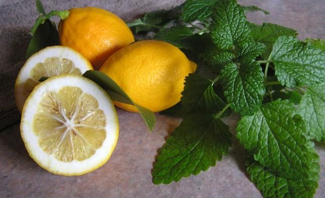 Как се заражда сицилианската мафия и каква е връзката с лимоните?