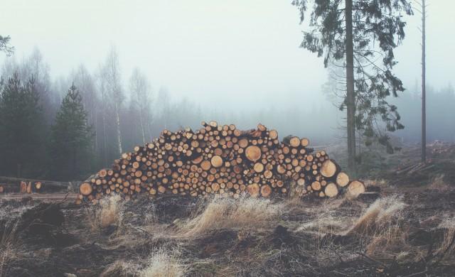 Дърводобив по финландски: 100% ефективност и нулеви загуби