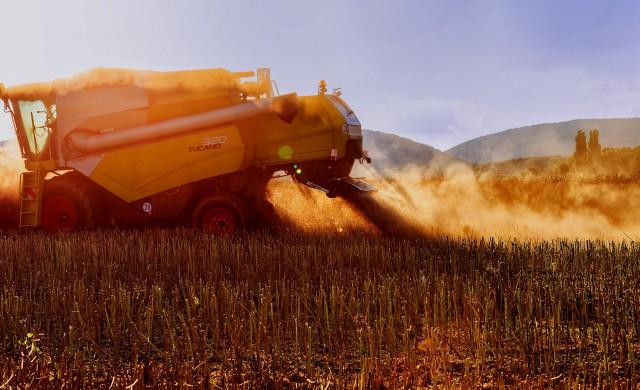 Земеделието продължава да е водещ отрасъл в селското стопанство