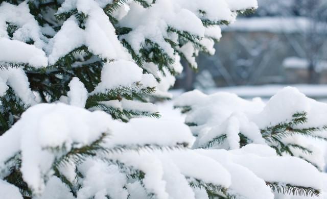 Зимата дойде на Балканите. Къде падна първият сняг?