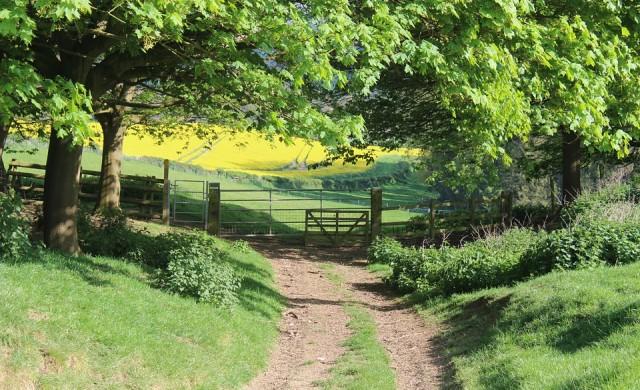Колко струва да си купите селски имот в съседство с принц Чарлз?