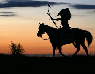 ДНК тест потвърди, че мъж е правнук на индианския вожд Седящия бик