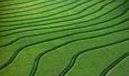 Членовете на БАСЗЗ с 2 млн. дка земеделска земя в края на 2008 г.