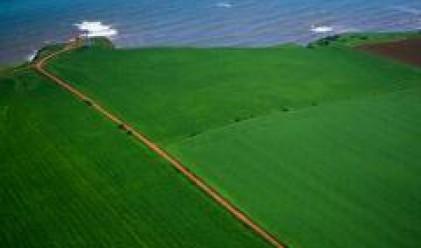 Цената на добре управляваната и обработваната земя расте плавно