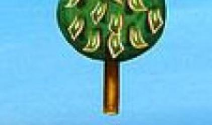 Активите на българските фондове надвишават 980 млн. лв.