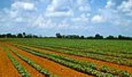 Агро Финанс АДСИЦ купи 7200 дка земеделска земя за месец