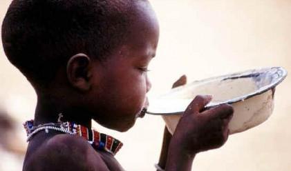 Един от всеки шест в света гладува