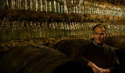 Луксозни вина се продадоха за милиони на търг