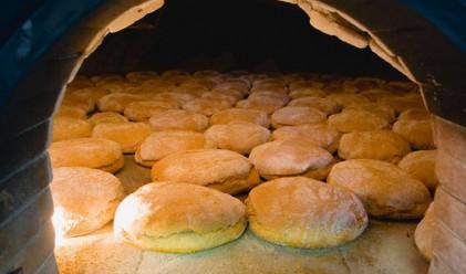 Пшеницата от реколта 2010 стига за хляб само за 90 дни