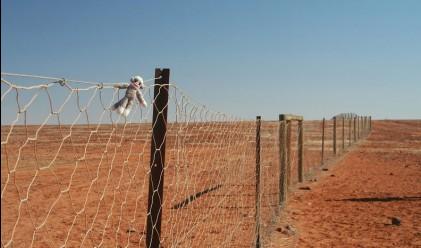 Ограда, простираща се на 5614 км, е най-дългата в света