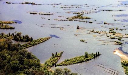 Призрачният флот на Mallows Bay