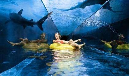 Приказният курортен комплекс Атлантис Палм в ОАЕ