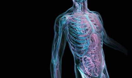 9 странни реакции на човешкото тяло, които са защитни механизми