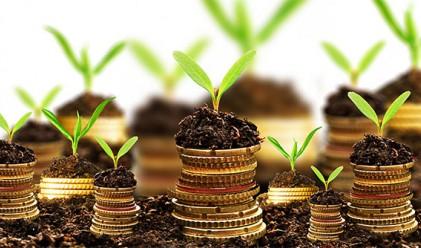 Инвестиционните фондове у нас с рекордни активи