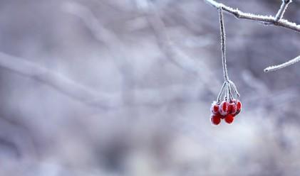 Студ и много сняг ни чакат през декември