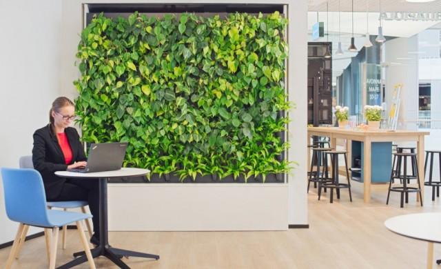 Жива стена прочиства въздуха посредством изкуствен интелект
