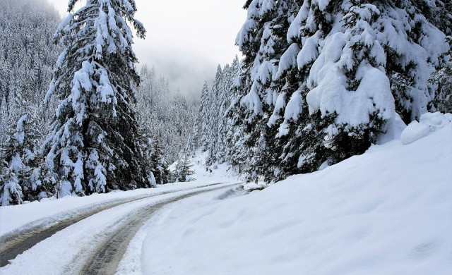 230 снегорина обработват пътищата на страната