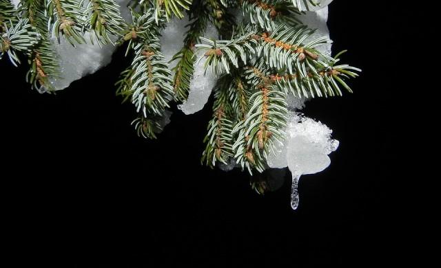 От плюс 15 до минус 15 през декември. Ще има ли сняг по Коледа?