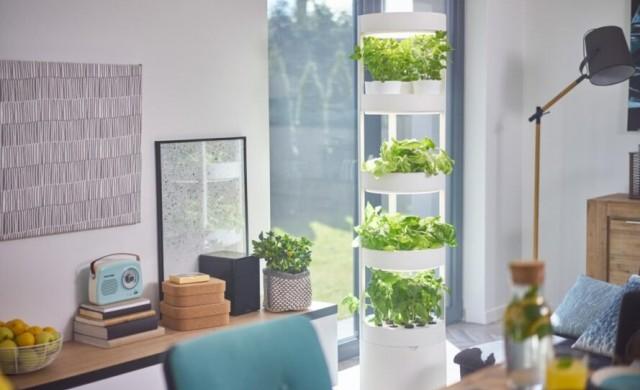 Система без почва, с която да отглеждате 76 растения у дома