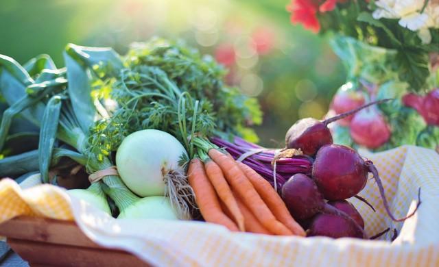 Цените на производител в селското стопанство бележат понижение
