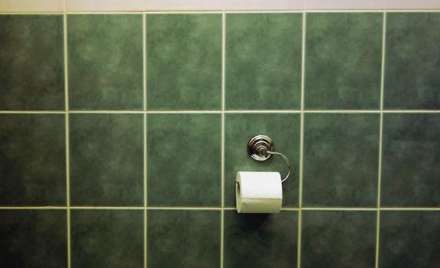 Близо 1/3 от румънците нямат тоалетна в дома си