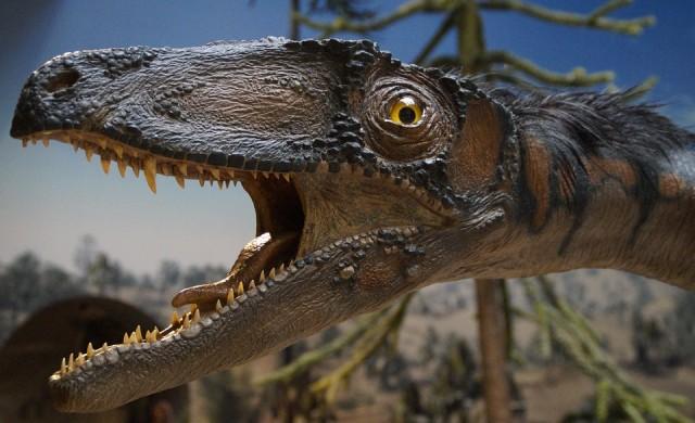 Палеонтолози откриха запазени пера на динозавър в Австралия