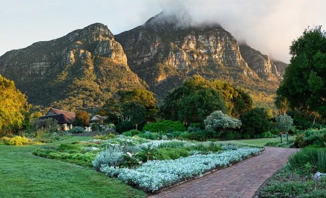 Топ 10 на най-големите градски паркове в света
