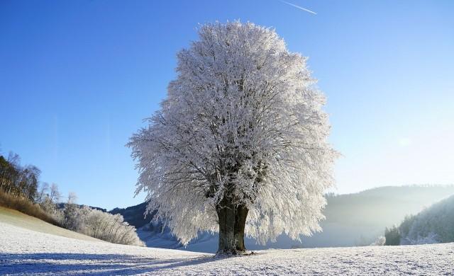 Ще завали ли сняг през ноември?