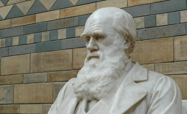 Как два ценни ръкописа на Чарлз Дарвин изчезнаха от британска библиотека?