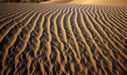 Адванс Терафонд притежава земи за 66 млн. лв.