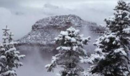 Сняг в най-слънчевия град в САЩ